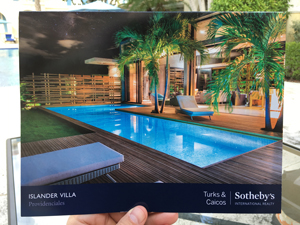 Sothebys Brochure in Hand